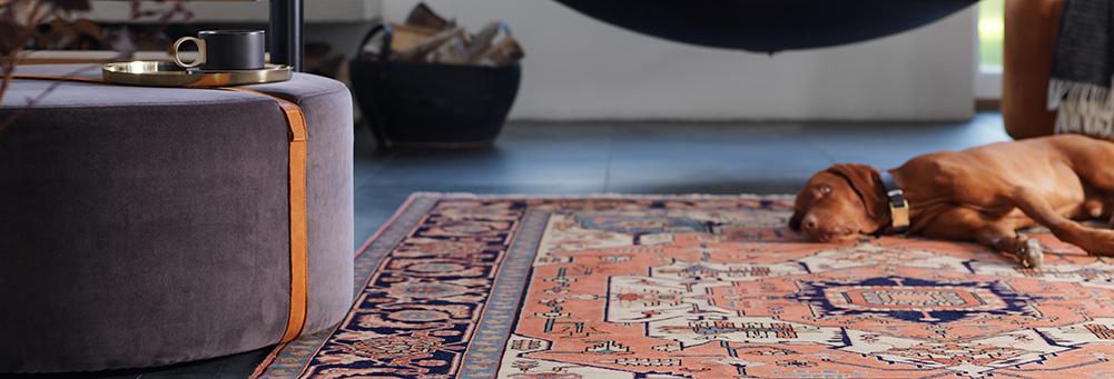 Popularne dywany