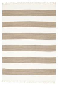 Cotton Stripe - Brunatny Dywan 160X230 Nowoczesny Tkany Ręcznie Jasnoszary/Biały/Creme (Bawełna, Indie)