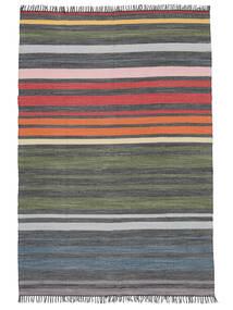 Rainbow Stripe - Szary Dywan 160X230 Nowoczesny Tkany Ręcznie Jasnoszary/Ciemnoszary (Bawełna, Indie)