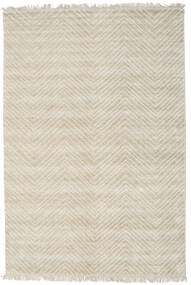 Vanice - Beżowy Dywan 160X230 Nowoczesny Tkany Ręcznie Ciemnobeżowy/Jasnoszary ( Indie)
