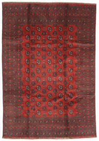 Afgan Dywan 200X288 Orientalny Tkany Ręcznie Ciemnoczerwony/Ciemnobrązowy (Wełna, Afganistan)
