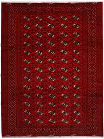Turkmeński Dywan 258X344 Orientalny Tkany Ręcznie Czerwony/Ciemnoczerwony/Ciemnobrązowy Duży (Wełna, Persja/Iran)