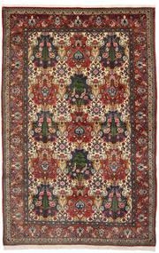 Baktjar Collectible Dywan 150X240 Orientalny Tkany Ręcznie Ciemnobrązowy/Jasnobrązowy (Wełna, Persja/Iran)